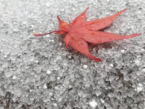 新穂高ロープーウェイにもいきました(*^_^*)  一日目は台風と重なり、二日目に行った新穂高は途中で雪も降ってきてしまい天候に恵まれず  計画通りにはいきませんでしたが、本人は大喜びしてくれたので良かったです(^^)  最終的に、どこに行くかじゃなく誰と行くかだね、という結論に至りました(笑)  歳をとっておばあちゃんになっても、変わらない自分たちでいたいねーと話しながら  良い友達に恵まれたなぁという気持ちになり、友達へのお祝いでしたが  自分が幸せな気持ちになることができました(*^_^*)  ですがやっぱり・・・晴れていてほしかったなぁ・・・(笑)