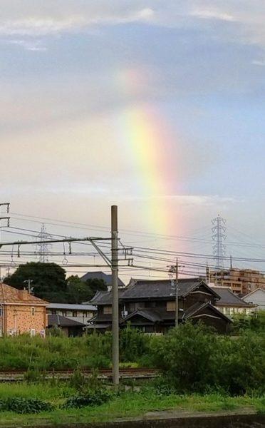 綺麗な『虹』が出てました。