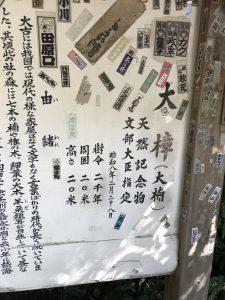 有名な神社にも行ってきました。