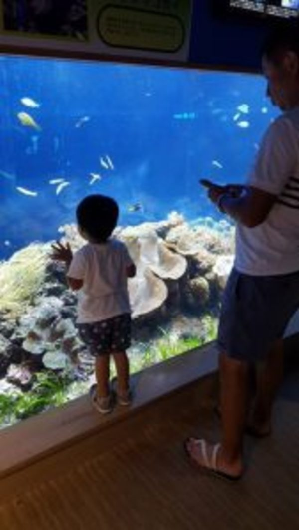 2回目の水族館