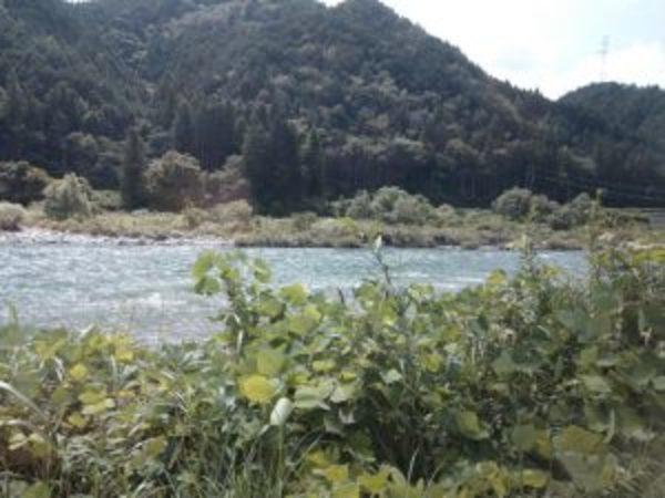 板取川part2.